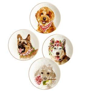 Posh Pups Salad Plates Set